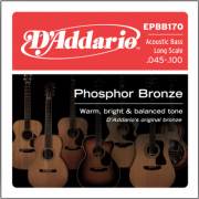 D`Addario EPBB170 Acoustic Bass Phosphor Bronze 4 String